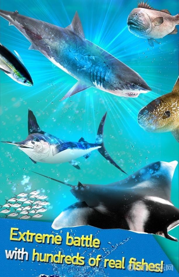 壁纸 海底 海底世界 海洋馆 水族馆 613_946 竖版 竖屏 手机